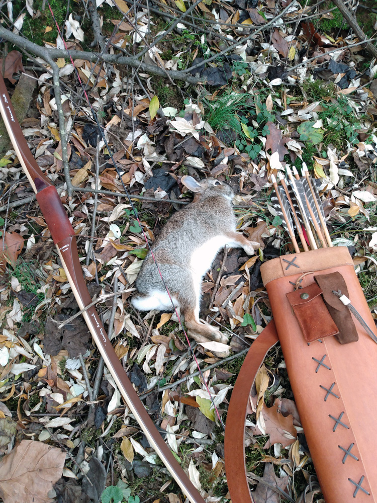 Rabbit hunting with the ASL